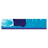 logo_cap_gemini