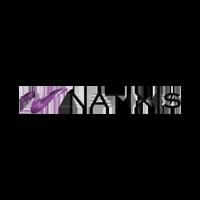 logo natixis gfoundry